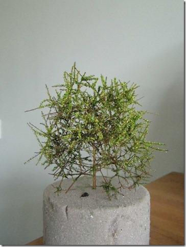 model railroad tree scenery